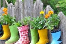 Greenhouse& Garden Ideas / by Avery Marcott