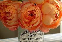 masion en ORANGE / Orange color inspiration & palettes / by Where Women CREATE Magazine