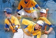 Spalding University Athletics / Highlights and Information about our NCAA Division III athletic teams.   / by Spalding Alumni