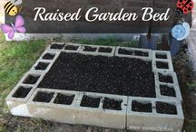 Garden ideas / by Emma Murray