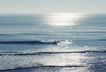 Beachy Keen / by Roxanne Gross