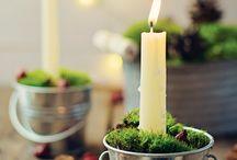 Holiday Ideas  / by Tiffany Manzer