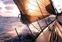 Sailing / by Leeann Morrissey