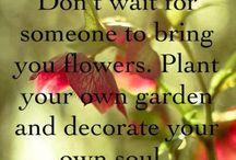 Words of Wisdom / by Linda Luna