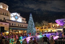 CityPlace's Winter Wonderland / by CityPlace