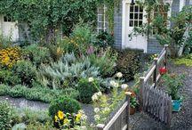 Gardens: herb/potager / by Linda-Lee Earle