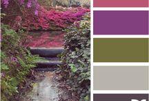 Colors / by CJ Esposito