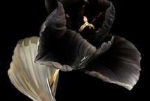 Flower / by CHUCHU NY