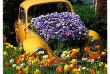 Garden inspiration / by Anita Hagen