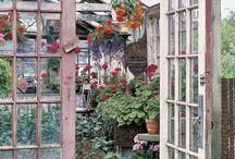 garden envy / by C Liv H