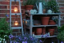 Porch and Patio Decor / by Tammy Hanney