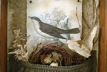 Altered Art. / Shadow boxes, dioramas, and up-cycled eccentricities. / by Whisper Willows