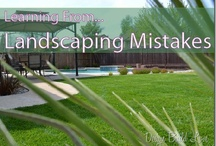 landscaping / by Judy McAndrew