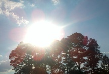 My Photography (:  / by Kaylah Holcomb