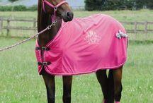Horse Stuff Wishlist!! / by Alyssa Marie Murray! :)