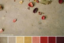 New House Colors / by Cat Fury