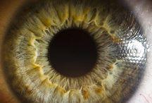 Eye-mazing / by Carissa Case
