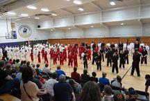 Martial Arts / by Black Belt Karate Studio of Racine