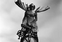 Rock n Fold / by Dahon Bikes