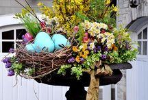 Spring has Sprung / by Margie Frank