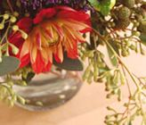 Spring Weddings / by WholeBlossoms Wholesale Wedding Flowers