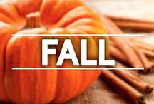 Fall / Everything you need to get you ready for Autumn  / by NutriBullet