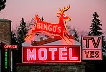 Motel signs / by Suzan Fortson