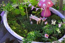 Fairy garden / by Kristen Helm