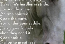 Horses / by Deborah Sladovnik