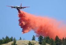 Western Montana wildfires / by Missoulian