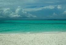 Life's a Beach! / by Linda Brakemeyer