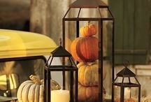 Thankful much? / Thanksgiving and fall/autumn ideas / by Cindy Lichttenegger