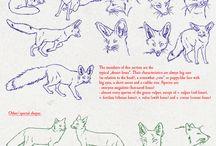 Foxes / by Jamie Nichol