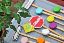 Teaching Gardening / by Megan Asby
