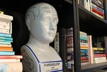 phrenology / by Tonya Ricucci