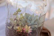 Mason Jar Ideas / by Zoe {Sew It Girl}