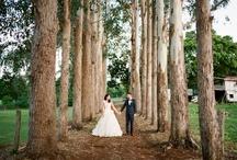 wedding / by Blaise