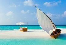 Take me to the beach!! / by Gillian Johnson
