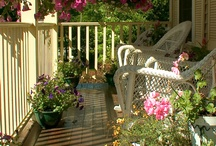 Front porches I would love to have / by Pam Grothmann