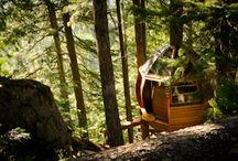 Green Living / by Nest Clarksville
