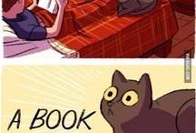 Catssssssss / by Stephen Simpson