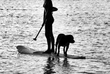 Paddle life / by Cheryl Wilson
