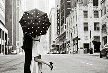 shelters / by Sarah Gardan