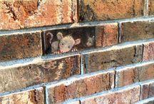 chalk art / by Carol Deaville
