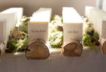 Wedding / Wedding! / by Pam Scheihing