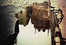 Reflections/Shadows / by Camille Strawberry