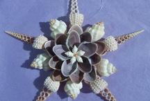 Seashells / by Pearl Glass