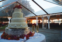 Wedding Cakes / by Jennifer Mary Robards