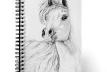 Awestruck for Arabians / by Donna Brown