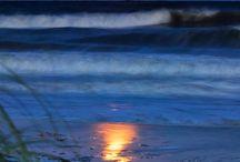 Sun & Sand / by Elizabeth Britt